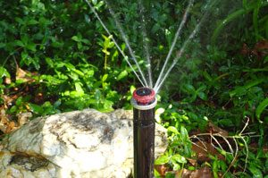 Water Efficient Sprinkler