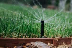 Water Use: The Truth of How We Use Water Will Astound You