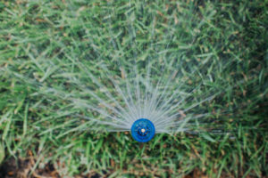It's Time to Spruce Up Your Sprinklers